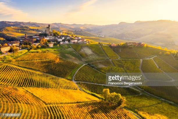 aerial view of serralunga d'alba village in autumn. barolo wine region, langhe, piedmont, italy, europe. - piedmont italy stock pictures, royalty-free photos & images