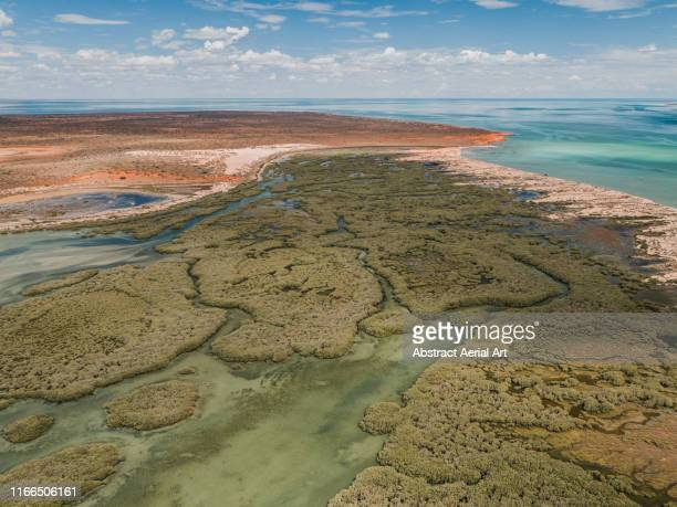 aerial view of shark bay marshlands, australia - marsh stock pictures, royalty-free photos & images