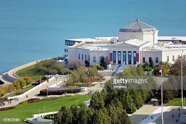 Aerial View of Shedd Aquarium, Chicago, Illinois, USA