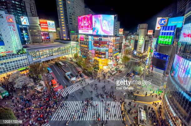 aerial view of shibuya crossing at night. tokyo 2020, japan - tokyo japan stock pictures, royalty-free photos & images
