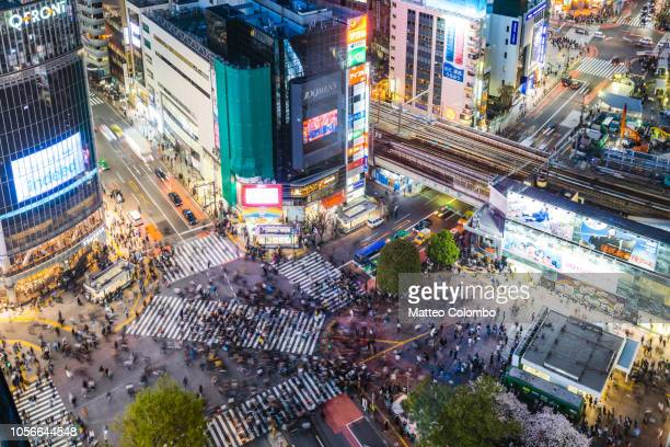 aerial view of shibuya crossing, tokyo, japan - shibuya ward stock pictures, royalty-free photos & images
