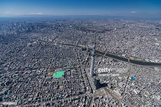 Aerial view of Sky Tree and Tokyo