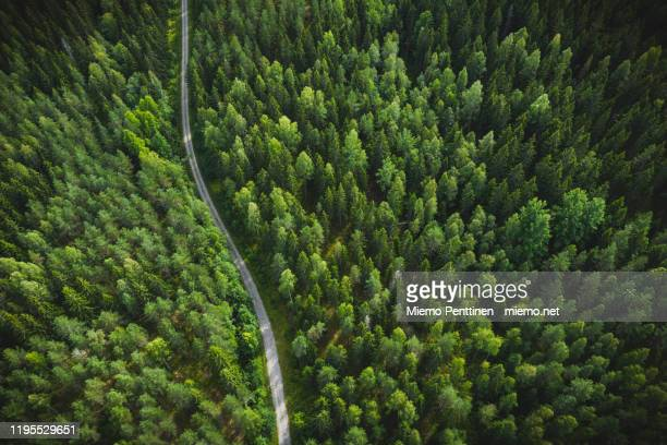 aerial view of small dirt road in the middle of the forest in finland during summer - forest road stock pictures, royalty-free photos & images