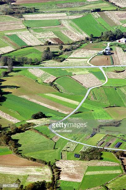 Aerial view of smallholding fields in the county of La Coruna.