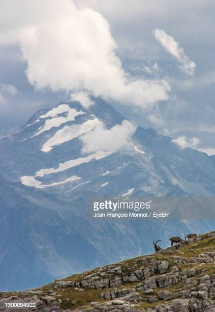 aerial view of snowcapped mountains against sky - sallanches stock pictures, royalty-free photos & images