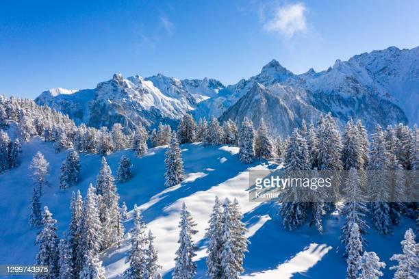 luftaufnahme von schneebedeckten bäumen in den bergen - kemter stock-fotos und bilder