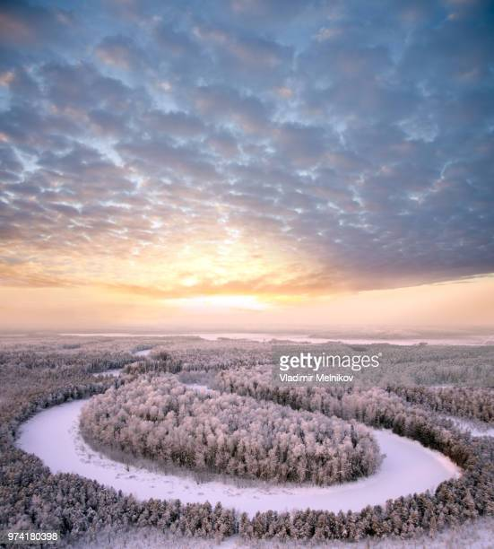 aerial view of snow-covered forest at dusk, siberia, russia - シベリア ストックフォトと画像