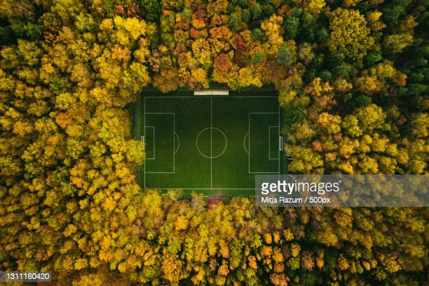 aerial view of soccer field in the middle of an autumn forest,russia - football pitch stock pictures, royalty-free photos & images