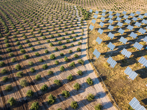 Aerial view of solar power station - gettyimageskorea