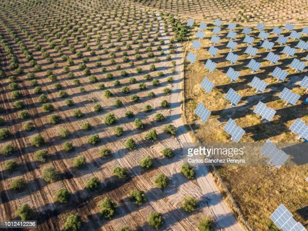 aerial view of solar power station - questão ambiental imagens e fotografias de stock