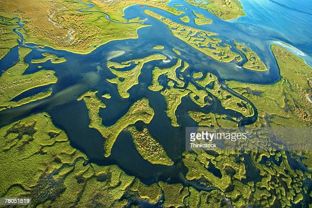 aerial view of steinhatchee river, florida - estuary stock pictures, royalty-free photos & images