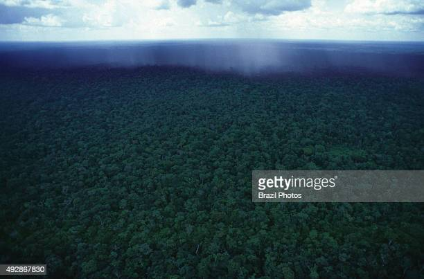 Aerial view of storm at Amazon rain forest Brazil
