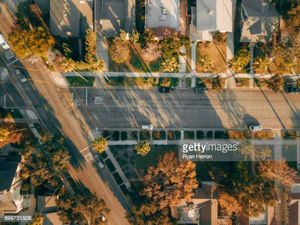 aerial view of street with palm trees - pasadena california stock pictures, royalty-free photos & images