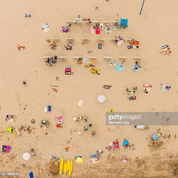 Aerial View of sunbathers lying in sand
