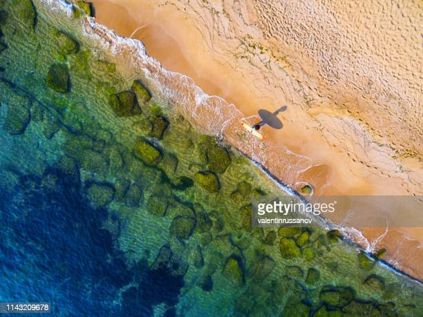 aerial view of surfer going into the sea - queensland stock pictures, royalty-free photos & images