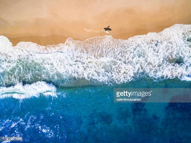 aerial view of surfer going into the sea - australia stock pictures, royalty-free photos & images