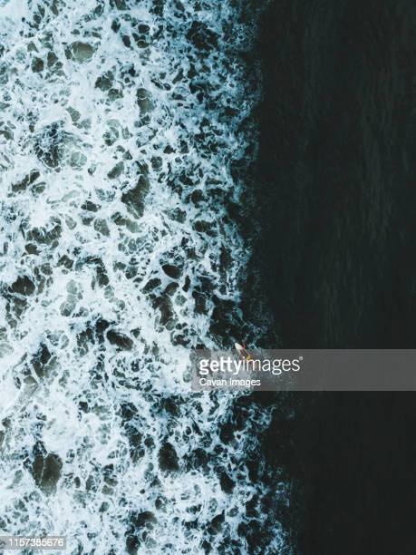 aerial view of surfer - indian ocean stock pictures, royalty-free photos & images
