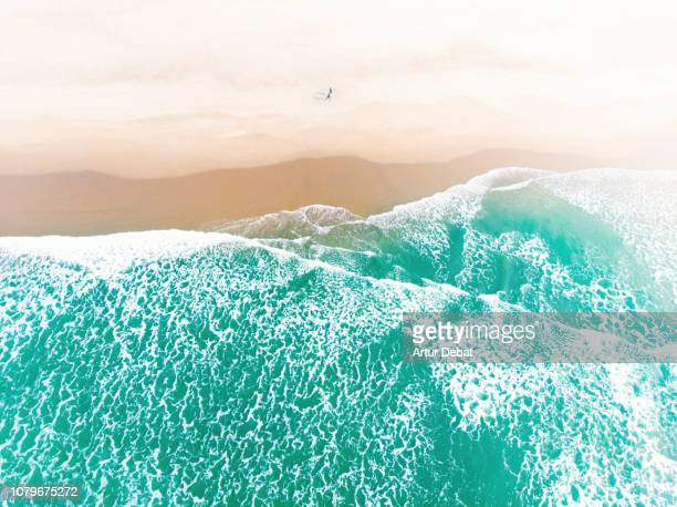 aerial view of surfers in the ocean beach of san francisco during sunset. - kalifornien stock-fotos und bilder