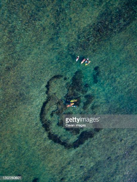 aerial view of surfers in the ocean - continental_shelf stock pictures, royalty-free photos & images