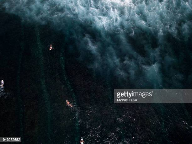 Aerial View of Surfers surfing waves