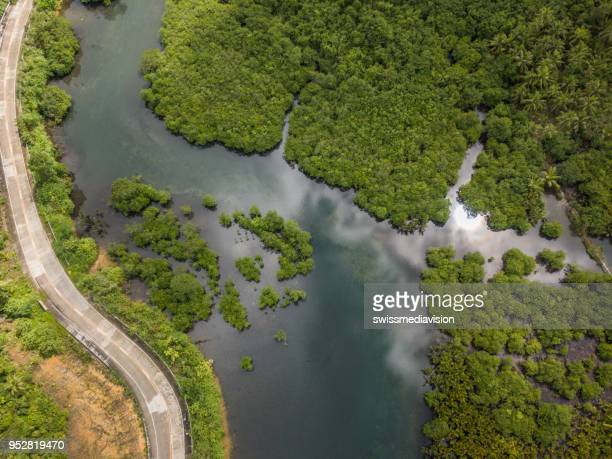 aerial view of swamps and road in the philippines - billabong water stock photos and pictures