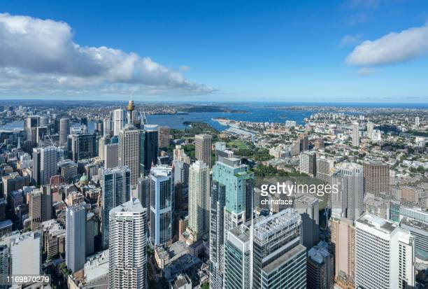 aerial view of sydney cityscape - downtown stock pictures, royalty-free photos & images