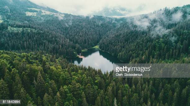 aerial view of synevir lake in the  carpathian mountains in ukraine - ukraine stock pictures, royalty-free photos & images