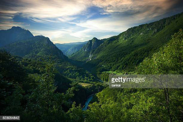 aerial view of tara river gorge. - montenegro stock pictures, royalty-free photos & images