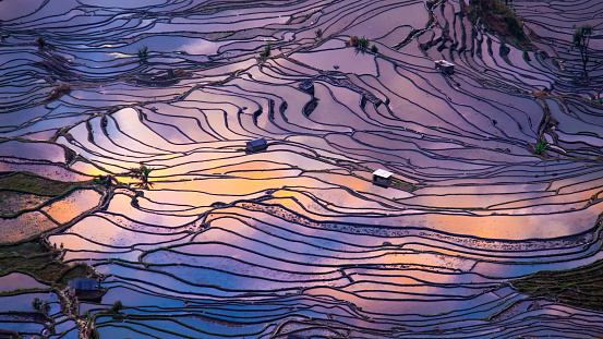 Aerial view of Terraced rice fields, Yuanyang, China - gettyimageskorea