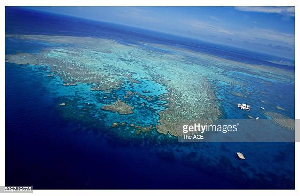 Aerial view of the Agincourt number three reef from the Quicksilver Eight pontoon on the Great Barrier Reef Queensland A team of researchers have...