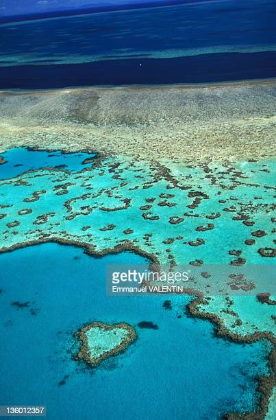 Aerial view of the aptly named Heart Reef, a heart-shaped coral reef in the Coral Sea, in the Great Barrier Reef, Whitsunday Islands off the coast of...