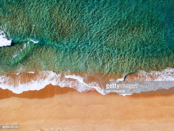aerial view of the australian bondi beach - bondi beach stock pictures, royalty-free photos & images