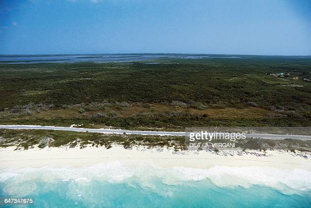 Aerial view of the beach and a section of the east coast of San Salvador island Bahamas