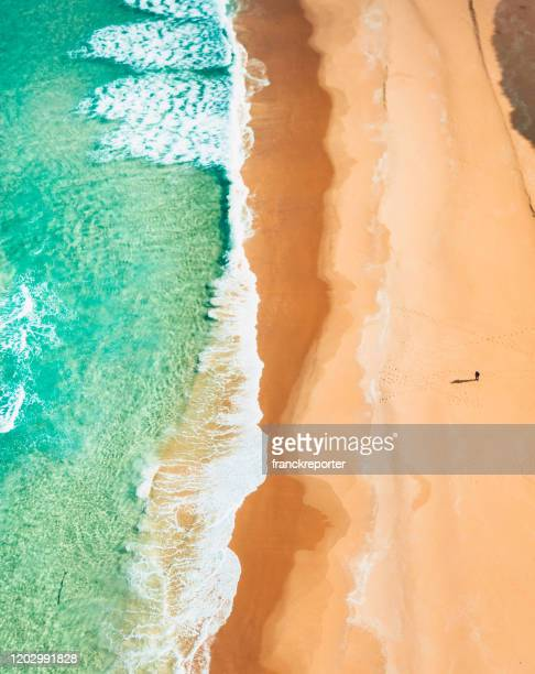 aerial view of the beach in australia - bondi beach stock pictures, royalty-free photos & images