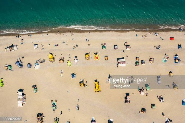 aerial view of the beach on holiday - 蔚山 ストックフォトと画像