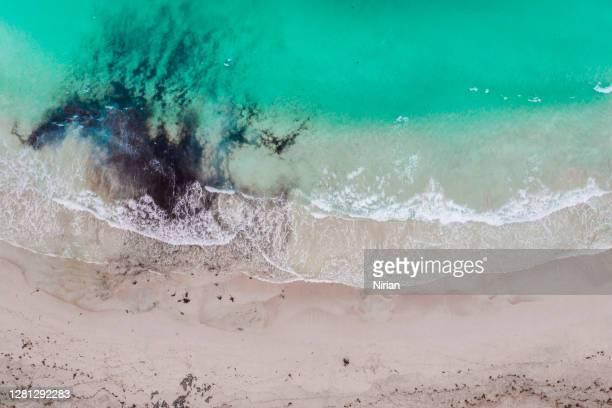 luftaufnahme des strandes - kontaminierung stock-fotos und bilder