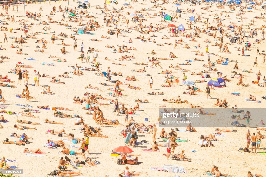 Aerial view of the Bondi Beach, Australia : Foto stock