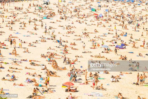 aerial view of the bondi beach, australia - large group of people imagens e fotografias de stock