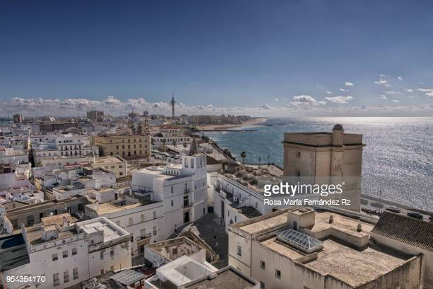 Aerial view of the city of Cadiz from Santa Cruz Cathedral. Cadiz, Andalusia, Spain