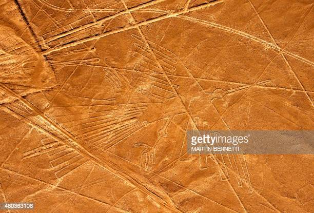 Aerial view of the Condor at Nazca Lines some 435 km south of Lima Peru on December 11 2014 Geoglyphs can be seen only from atop the surrounding...