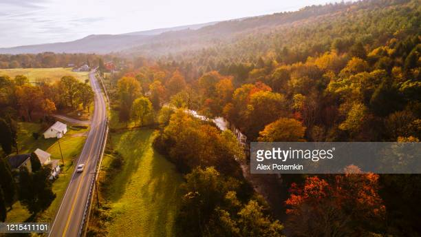 aerial view of the country road in the forest in the mountain in the autumn foggy morning. - small town stock pictures, royalty-free photos & images