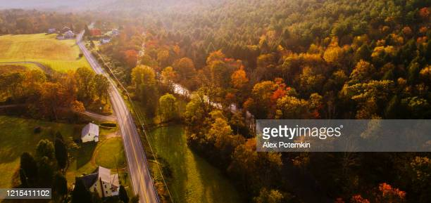 aerial view of the country road in the forest in the mountain in the autumn foggy morning. - pennsylvania stock pictures, royalty-free photos & images