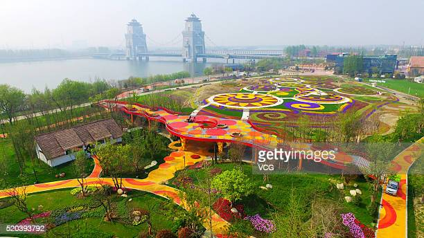 Aerial view of the flower fields in Marco Polo Flower World on April 10 2016 in Yangzhou Jiangsu Province of China The Marco Polo Flower World...