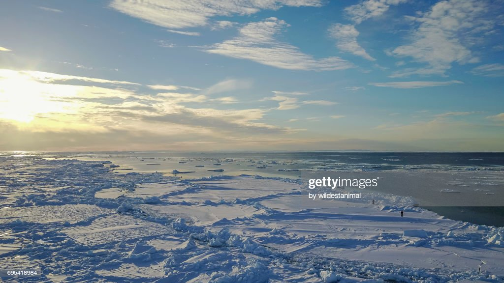 Aerial view of the horizon and sea ice at the ice floe edge at midnight, Baffin Island, Canada. : Stock-Foto