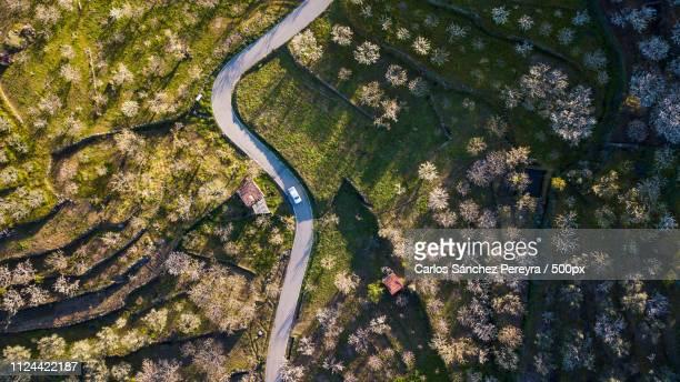 aerial view of the landscape of the jerte valley - estremadura stock-fotos und bilder