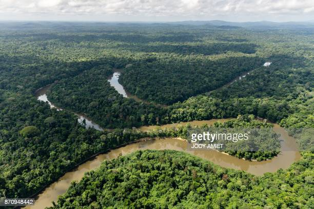 Aerial view of the Mana river in the Amazonian forest on October 12 French Guyana / AFP PHOTO / Jody AMIET
