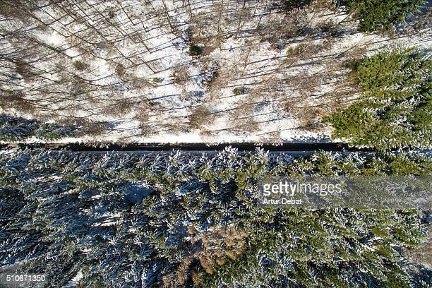 Aerial view of the Montseny mountain with snow on winter with beautiful beech woods and road asphalt.