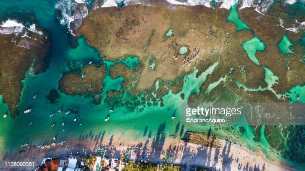 "Aerial view of the ""Porto de Galinhas"" beach"