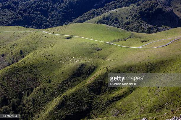 Aerial view of the Pyrenees Mountains and sheep