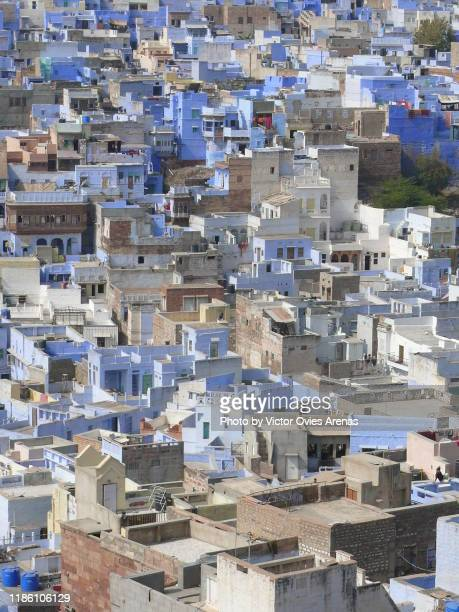 aerial view of the rooftop of the brahmin blue old city in jodhpur, rajasthan, india - victor ovies fotografías e imágenes de stock